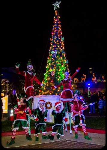Christmas Blast~Off  Hawaiian Gardens Tree Lighting